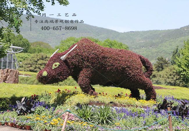 植物绿雕动物牛造型