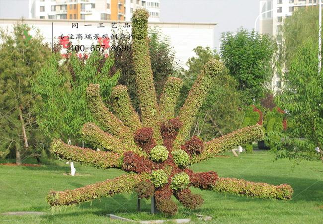 植物绿雕菊花造型