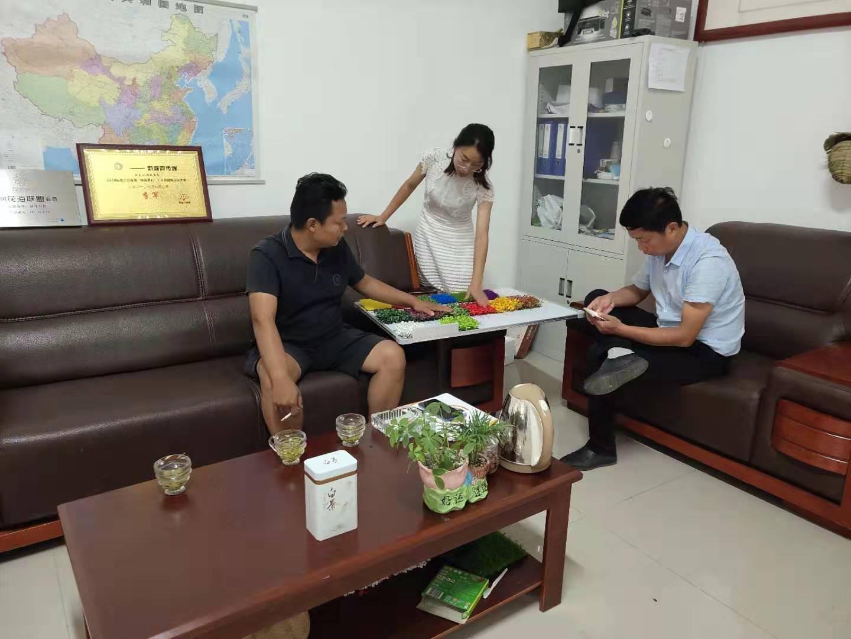 客户里参加稻草工艺品绿雕工艺品参观结束选产品
